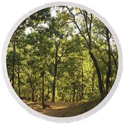 A Path Through A Sparse Forest And Trees Round Beach Towel