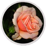A Peach Of A Rose Round Beach Towel