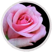 A Pink Rose Round Beach Towel