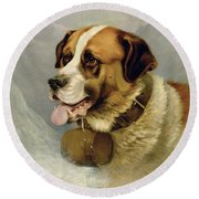 A Portrait Of A St. Bernard Round Beach Towel