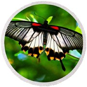 A Real Beauty Butterfly Round Beach Towel
