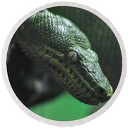 A Real Reptile Round Beach Towel