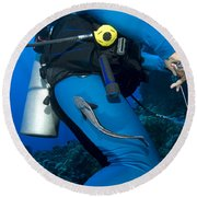 A Remora Attached To A Diver, Kimbe Round Beach Towel