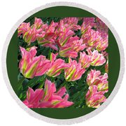 A Sea Of Pink Tulips. Square Format Round Beach Towel