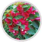 A Section Of Pink Bougainvillea Flowers Round Beach Towel