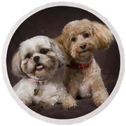 A Shihtzu And A Poodle On A Brown Round Beach Towel