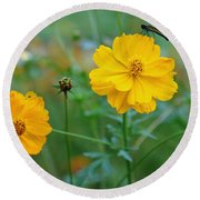 A Small Dragon Fly Sitting On A Yellow Flower Round Beach Towel