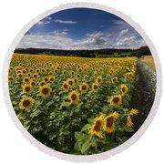 A Sunny Sunflower Day Round Beach Towel