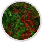 A Touch Of Christmas In Nature Round Beach Towel