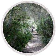 a walk about fairy wood - Mediterranean autumn forest Round Beach Towel