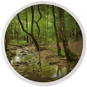A Woodland Stream In Cades Cove No.472 Round Beach Towel