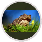 A Worm's Eye View Round Beach Towel
