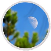 Above The Pines Round Beach Towel