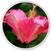 Abundantly Pink Round Beach Towel