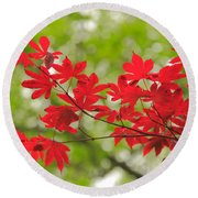 Acer Leaves Round Beach Towel