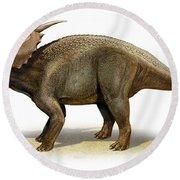 Achelousaurus Horneri, A Prehistoric Round Beach Towel