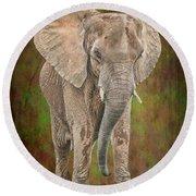 African Elephant Round Beach Towel