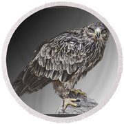 African Tawny Eagle Round Beach Towel