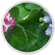 African Violets Intertwined I Round Beach Towel