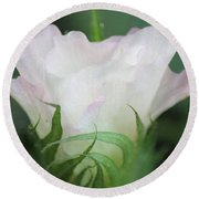 Agriculture - Cotton Bloom Round Beach Towel