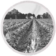 Agriculture- Corn 2 Round Beach Towel