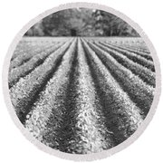 Agriculture-soybeans 6 Round Beach Towel