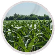 Alabama Field Corn Crop Round Beach Towel