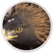 Alert Golden Eagle Round Beach Towel