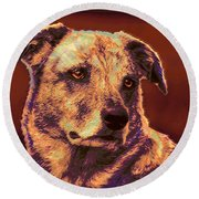 All American Mutt 2 Round Beach Towel