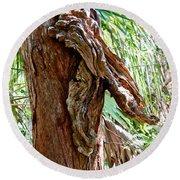 Alligator Cypress Knot Round Beach Towel