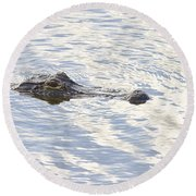 Alligator With Sky Reflections Round Beach Towel