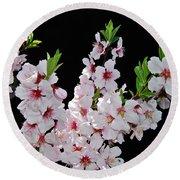 Almond Blossom 0979 Round Beach Towel