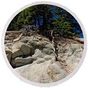 Alpine Pine Hangs On For Life Round Beach Towel
