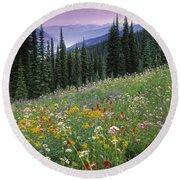 Alpine Wildflower Meadow, Mount Round Beach Towel
