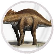 Amargasaurus Cazaui, A Prehistoric Era Round Beach Towel