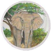 Amboseli Elephant Round Beach Towel