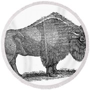 American Buffalo Round Beach Towel
