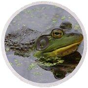 American Bullfrog Round Beach Towel