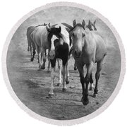 American Quarter Horse Herd In Black And White Round Beach Towel