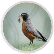 American Robin With Worms Round Beach Towel