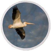 American White Pelican Pelecanus Round Beach Towel
