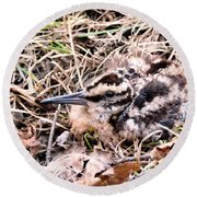 American Woodcock Chick No. 2 Round Beach Towel