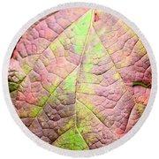 An Autumn's Leaf Round Beach Towel