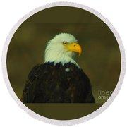 An Eagle Close Up  Round Beach Towel