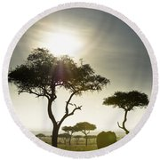 An Elephant Walks Among The Trees Kenya Round Beach Towel