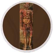 Anatomie Generale Des Visceres Round Beach Towel