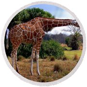 Another Neck Round Beach Towel