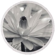 Ansel's Lily Round Beach Towel