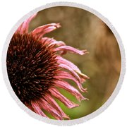 Antique Cone Flower Round Beach Towel