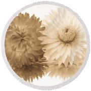 Antique Floral Duo Round Beach Towel